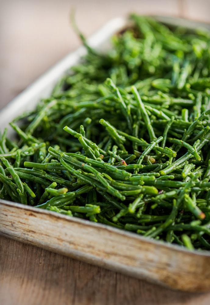 one of many fresh ingredients: samphire